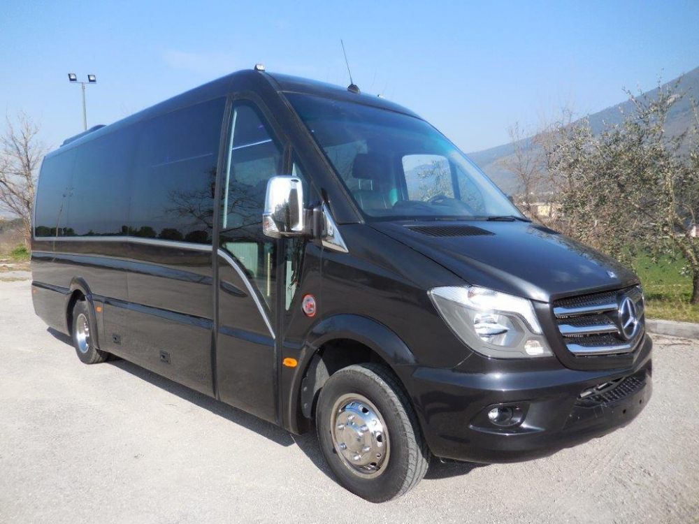 mercedes-benz-sprinter-plus_2